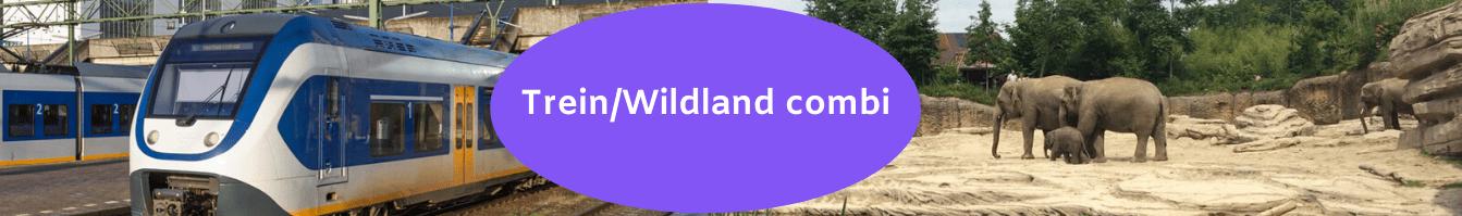 trein Wildlands